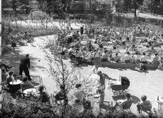 Geuzenveld, Amsterdam, 1957