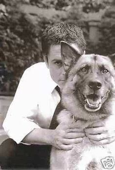 Rob Lowe and his German Shepard Dog.