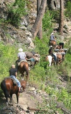 If you had one day at the Glacier National Park: take a trail ride | glacierMT.com
