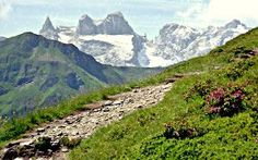 Allgäu kurze Touren Oberstdorf Sonthofen Hindelang Blaichach The Effective Pictures We Offer You Abo Camping Holiday, Holiday Travel, Camping And Hiking, Camping Hacks, Travel Destinations, Travel Tips, Africa Destinations, Travel Hacks, Madrid Restaurants