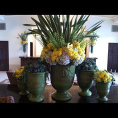 Yellow and green arrangements.