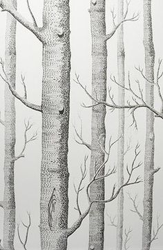 you have no idea how happy this birch tree wallpaper would make me!