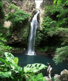 Walking through the deep forest; it is a warm humid day. In the distance you hear water dancing on rocks. There is a clearing ahead. You step into the clearing and dive into this Costa Rican waterfall!