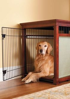 Provide ultimate comfort for your pet!