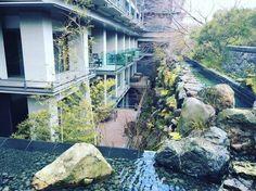 Three Thousand Dollar Hotel Review: Japan Day 5, Ritz-Carlton Kyoto #Amazing, #Art, #Best, #Commentary, #Dollar, #Escort, #Fitness, #Food, #FoodDrink, #Gym, #Hotel, #HotelReview, #Hotels, #Japan, #LoyaltyProgram, #Lunch, #Manager, #Marriott, #Mizuki, #Point, #Points, #Pool, #Reward, #Rewards, #Ritz, #RitzCarlton, #Ritz-CarltonKyoto, #Service, #Spa, #Spg, #Starwood, #StarwoodPreferredGuest, #Suite, #Thehotelion, #Thousand, #Tokyo, #Tour, #Travel, #Travelupdate, #Vacation, #Ye