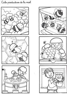 Ciclo productivo de la miel 03.jpg (459×640)