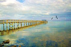 Ocean Art Print Florida Art Print Safety Harbor by FineArtography