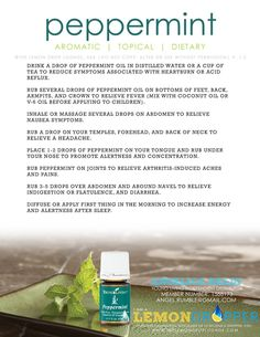 Young Living Essential Oils - Peppermint