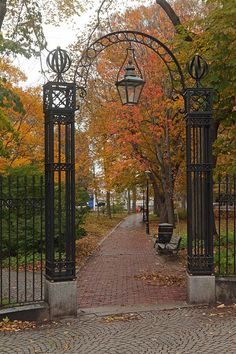 21 year old Canadian gal who loves everything Autumn related! Iron Gates Driveway, Small Garden Landscape, Front Gates, Autumn Scenery, Garden Fencing, Autumn Garden, House Front, Outdoor Projects, Belle Photo