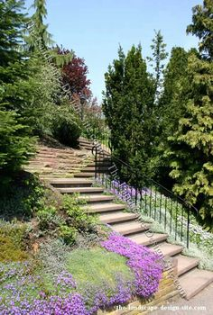 Stone step and stair ideas for steep hillside landscaping and yards. See how stones are placed to make hillside steps and stairs. Steep Hillside Landscaping, Shrubs For Landscaping, Hillside Garden, Sloped Garden, Landscaping Ideas, Landscape Stairs, Garden Landscape Design, House Landscape, Landscape Designs