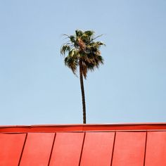 Minimalist Square Pictures of Los Angeles – Sinziana Velicescu is a photographer based in Los Angeles (900×447)