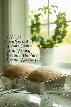 THM Easy Sprouted Whole Grain and Honey Bread Machine Bread - kristenhayphotography