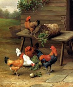 Unknown Artist Chickens art oil painting for sale; Select your favorite Unknown Artist Chickens art painting on canvas or frame at discount price. Rooster Art, Chicken Art, Chickens And Roosters, Oil Painting Reproductions, Farm Yard, Hens, Bird Art, Beautiful Birds, Farm Animals