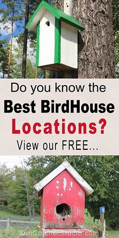 How to hang a birdhouse - including tips on placement, suitable nesting locations, and mounting a bird house. Bird House Plans, Bird House Kits, Bird Feeder Plans, Bird Feeders, Bird Nests, How To Build Abs, Bluebird House, Bird Aviary, Bird Houses Diy