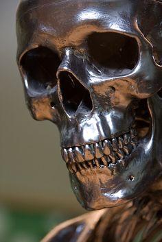 ☠  Human Skull Sculpture ☠