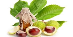 K výrobě kaštanové masti vám budou stačit plody kaštanu, listy a kokosový olej.