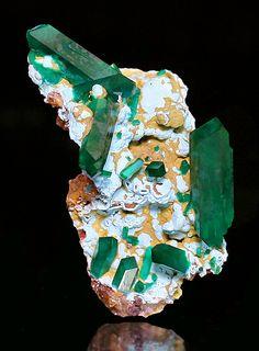 Dioptase crystals set atop Shattuckite covered matrix ~ Omaue Mine, Kaokoveld Plateau, Kunene Region, Namibia