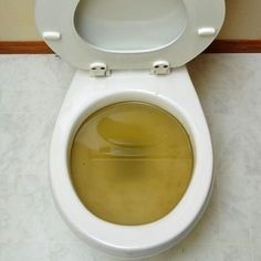 6 Ways to Unclog Your Toilet without a plunger or a plumber | Toilet ...