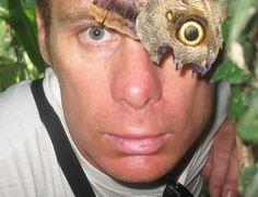 Grande moth
