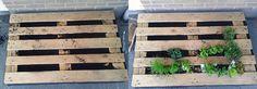 Verticale tuin in een pallet - Makkelijke Moestuin - Makkelijke Moestuin