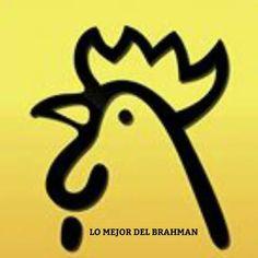 Bienvenidos a nuestra familia Rehagronegocios.com (GANADERÍA SACAPALOS) GANADERÍA SACAPALOS, CRIADORES DE GANADO BRAHMAN PURO, ROJO Y BLANCO. Hacienda Yucatán (La Dorada-Caldas) y Hacienda Candilejas (Puerto Salgar-Cundinamarca) COLOMBIA   https://rehagronegocios.com/productores/ganaderia-sacapalos/