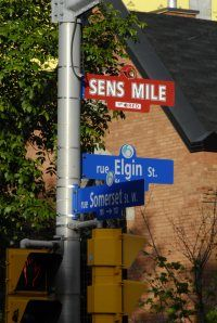 Elgin Street, home to the Sens Mile, during Sens playoff time. Wonder where the Leafs Mile is? Ottawa Tourism, National Hockey League, Nhl, Signs, Street, Sports, Life, Hs Sports, Novelty Signs