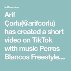 Arif Çorlu(@arifcorlu) has created a short video on TikTok with music Perros Blancos Freestyle. Karma video içinde ayrıntıyı fark eden oldu mu ? #arifcorlu #powerAwesome #trend #aleykumselam #tiktok Shape Of You, Mortal Kombat, Techno, Guys, Film, A & R, Tv, White Dogs, Musica