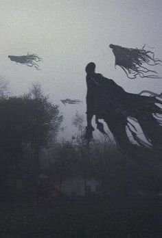 Harry Potter Tumblr, Harry Potter Day, Estilo Harry Potter, Mundo Harry Potter, Harry Potter Halloween, Harry Potter Pictures, Harry Potter Universal, Harry Potter Dementors, Harry Potter Ghosts