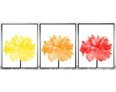 Yellow Orange Red Print Set of 3, Printable Flowers, Printable Wall Decor Set of 3 Prints Printable Wall Art Spring Artwork Instant Download