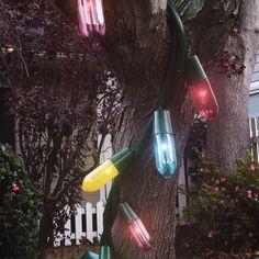 diy home decor Diy Christmas Lights, Christmas Yard Art, Christmas Crafts To Make, Simple Christmas, Christmas Trees, Diy Weihnachten, Xmas Decorations, Large Outdoor Christmas Decorations, Liquid Watercolor