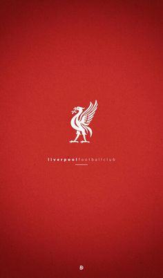 I love my bird 💋 Lfc Wallpaper, Liverpool Fc Wallpaper, Liverpool Wallpapers, Liverpool Fans, Liverpool Football Club, Zamalek Sc, Manchester United Team, This Is Anfield, Red Day