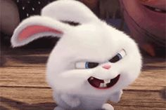 secret life of pets snowball - Google Search