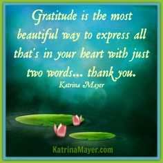 Gratitude is the most beautiful way to express all that's in your heart with just two words... thank you.