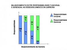 BALANCEAMENTO ENTRE RESPONSABILIDADE FUNCIONAL E GERENCIAL NO DESENVOLVIMENTO DA CARREIRA - Professor Ari