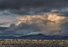 Last evening light catches storm clouds over Norwood Farm and the foothills of the Zuurberg Mountains near Adelaide in the Eastyrn cape Province of South Africa.