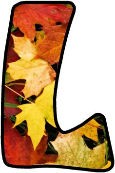 1 Decembrie, The Last Leaf, Fall Boards, Forever Memories, Alphabet Images, Monogram Alphabet, Tropical Party, Autumn Leaves, Beautiful Pictures