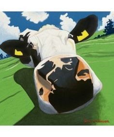 O´Connor Eoin, Cow III - DIZZY COW