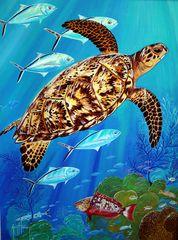 Panoramio - Photo of Painting from Guy Harvey Art Gallery, Grand Cayman Island