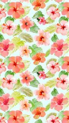 TROPICANA coral x midori iphone 5 wallpaper 640X1136px