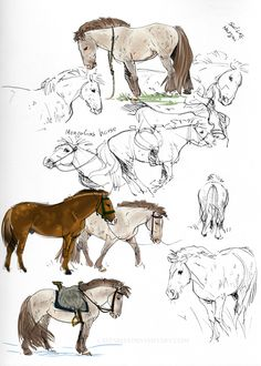 Mongolians - sketches by CSStables.deviantart.com on @DeviantArt