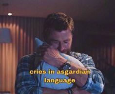 Avengers Cast, Avengers Memes, Marvel Jokes, Marvel Funny, Marvel E Dc, Marvel Actors, Marvel Heroes, Marvel Avengers, Chris Hemsworth
