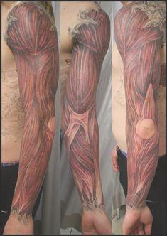 human anatomy tattoo tattoo art anatomy tattoos ideas ...