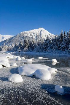 Mendenhall, Juneau, Küsten-Bereich