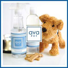 avaPET for your four-legged friend #natural #nontoxic @AvaNonToxic