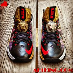 "Nike LeBron X ""Invictus"" Custom"