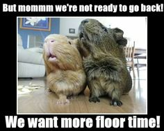 More floor time, please!