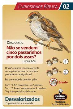 (VÍDEO) Conheça sua bíblia de capa a capa através de aulas online com um professor a suadisposição. ------------------------------------------------------------------- #bíblia, bíbliasagrada, bíblia online, bíblia estudo, #bíblia_estudo , bíblia católica, bíblia evangélica, bíblia sagrada de estudo, bíblia pentecostal #estudobíblico #Deus #Fé #versículos #mensagensdeus Bible Art, Bible Verses, Gospel Quotes, Catechism, Jesus Freak, Illustrated Faith, Praise The Lords, Bible Stories, Jesus Loves