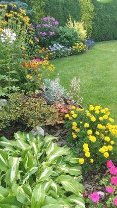 Back Yard Hostas | Outdoor Living | Pinterest | Backyard shade ... Semi Shade Garden Zone Design Html on