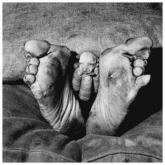 Roger Ballen - Outland::Puppy Between Feet, 1999
