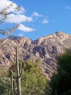 Tucson, Arizona → For more, please visit me at: www.facebook.com/jolly.ollie.77
